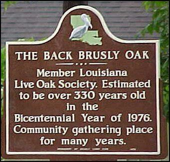 The Back Brusly Oak Historical Marker